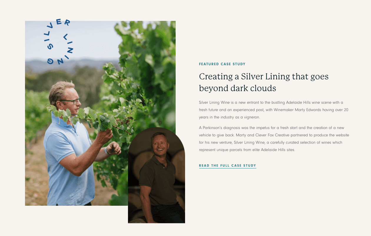 Case Study for Silver Lining Wines